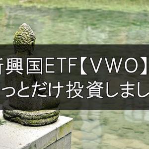 新興国ETF【VWO】にちょっとだけ投資しました。