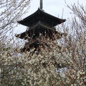 岡山 宝福寺・備中国分寺2