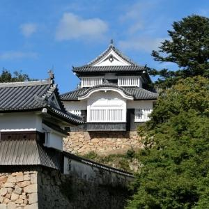 秋の山城 4 過去発見!