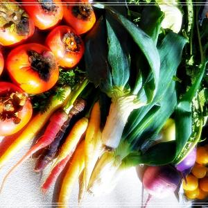 お野菜とステンド