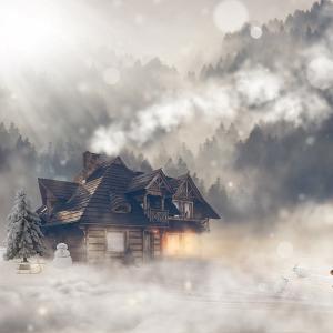 冬になると何故か元気が出ない。それは季節性情動障害かもしれない。