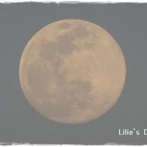 満月?!?