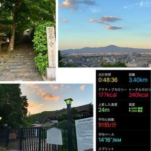 久しぶりの夕方散歩!!!Apple Watchで計測も!(^^)!