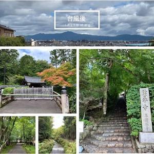 お散歩しやすい季節になりました!(*^_^*)