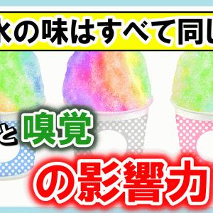 【3分豆知識】かき氷のシロップは色が違うだけで、味は全て同じ!