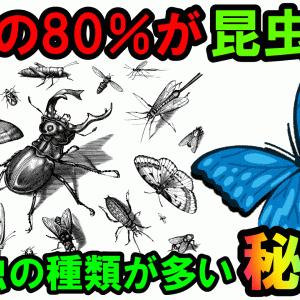 【3分豆知識】地球上に生息する生き物の約80%は昆虫!