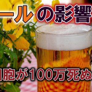 【3分雑学】ビールを飲むと脳細胞が100万個死ぬ!?