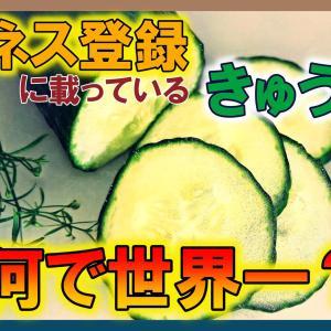 【3分雑学】きゅうりは世界一栄養がない野菜!?実際は間違い!