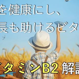 【ビタミンB2】肌や粘膜を健やかに保つビタミン【サプリメント】