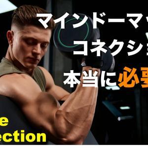 【筋肉を意識する】マインドマッスルコネクションとは?なぜ重要か?