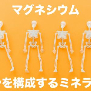 【マグネシウム】体内での働き・摂取量の目安【科学的解説】