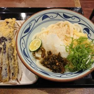 青唐おろし醤油うどん(大)@丸亀製麺谷町二丁目店