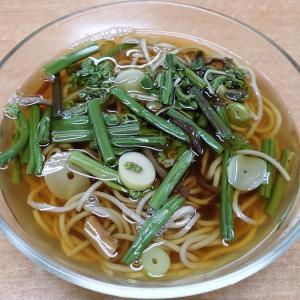 冷やし山菜そば@力餅食堂 中崎店(大阪市北区中崎)