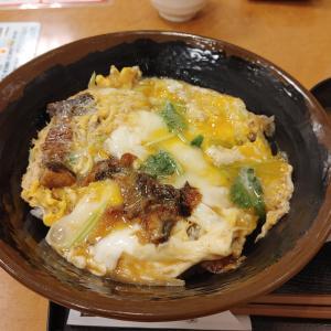 めしや宮本むなしJR神戸駅前店でワンコインのうな玉丼