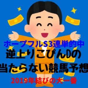 逆神りこぴんDの不定期競馬予想東京大賞典2019