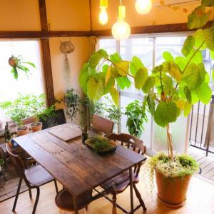 【キャンプテーブル】家でも使えるおすすめテーブル8選!
