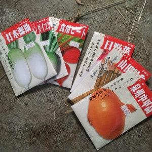 果菜類の日に6種の根菜類を播種!~自然農園~