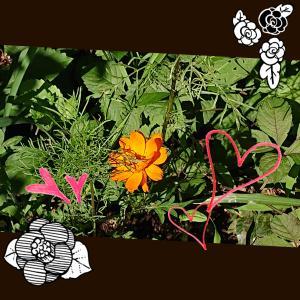 お花とバッタ