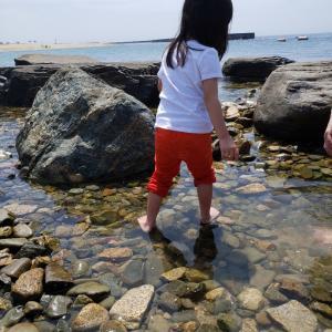 4歳7ヶ月 年中娘のおうち英語記録 ~発話状況や英語の独り言について~