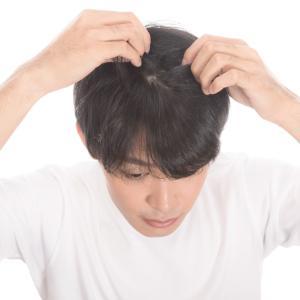 薄毛に悩む女性必見!原因やおすすめの薬用育毛剤の紹介