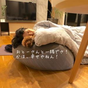 人をダメにするソファで添い寝。