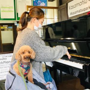 パークピアノ。