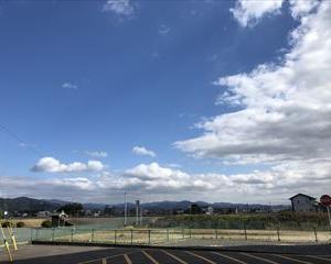 全豪オープンテニススタート!大阪なおみ連覇できるか?無料配信をWOWOWで視聴可能みたい。