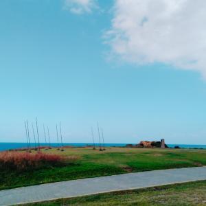【潮境公園】巨大ホウキ林が絵になるフォトジェニック海辺スポット