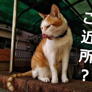 台湾での近所付き合い