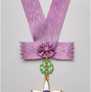 文化勲章のデザインを考案したのは誰?最年少で受賞した人の賞金や年金は?