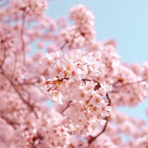 【3月春】何かしなくちゃ!あなたの人生スタートしてますか?