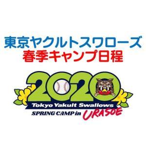 【無料】2020年ヤクルト春季キャンプのテレビ放送&ネット中継情報を詳しく