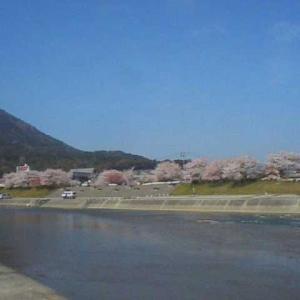 旅の思い出 三重旅行2日目 2002/03/31