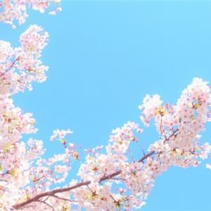 志村けんさんが亡くなったことがとても悲しい。ただの一視聴者でしかないけれど。