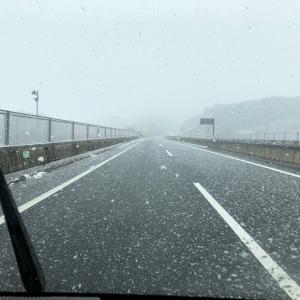 神奈川千葉も雪。