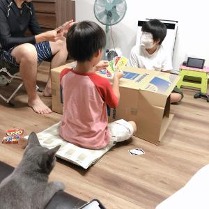 我が家はただいま保護猫ちゃんのトライアル中です