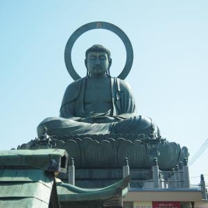 観光名所【高岡大仏】はイケメン?重さや高さ・気になるご利益情報も。