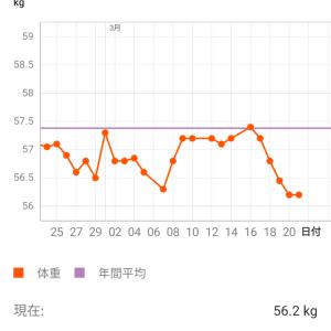 ダイエット11週目【ダイエット意欲満々+痩せ期】