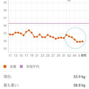 ダイエット21週目 【痩せ期きたきたーー(^o^)】