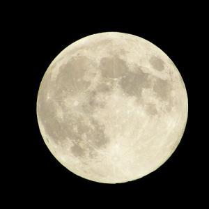 月って、神秘的✨