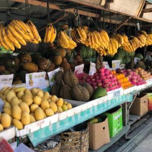 【フルーツ】南国のセブ島はフルーツが安くて美味しい!