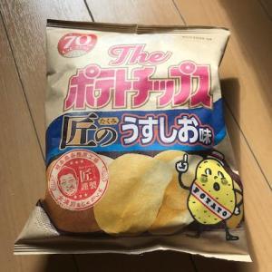 お菓子の(多分)新商品〜ポテチと小枝〜