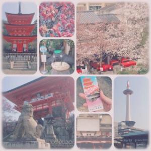 旅日記・京都での思い出