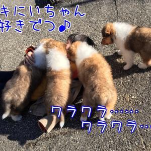 幸せになーれ(❁´ω`❁)