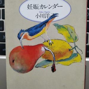 美しい表現がちりばめられたイヤミス未満の純文学作品―『妊娠カレンダー』著:小川洋子