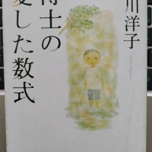 記憶という自己のアイデンティティが損なわれるとき、あなたは何を思うか?―『博士の愛した数式』著:小川洋子
