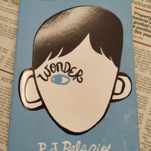 どんな子だって親には宝もの!少年の成長物語(英語)―『WONDER』著:R. J. PALACIO