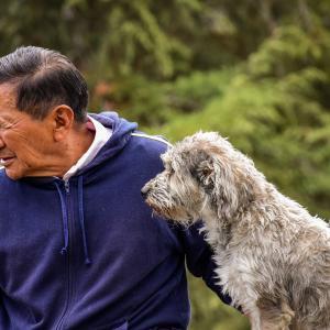 医療崩壊や介護崩壊を予防するために高齢者が犬を飼うことは良い