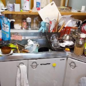 閲覧注意〓汚部屋キッチン