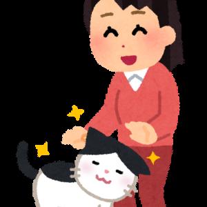 保護猫を救う素敵な企画♪